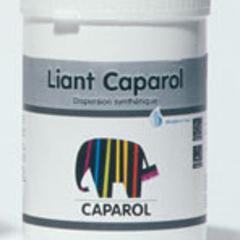 caparol binding medium